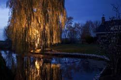 outdoor pond lighting