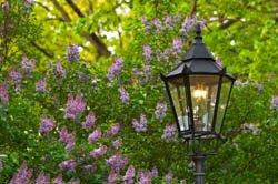 gas outdoor lighting